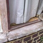 Do you know why & how fungi can damage your timber windows?